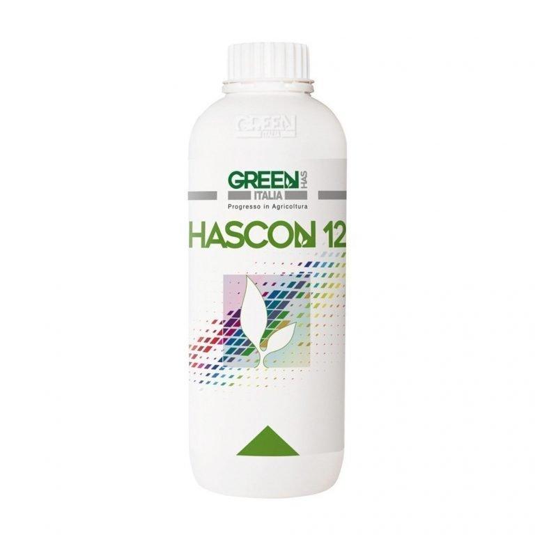 HASCON 12