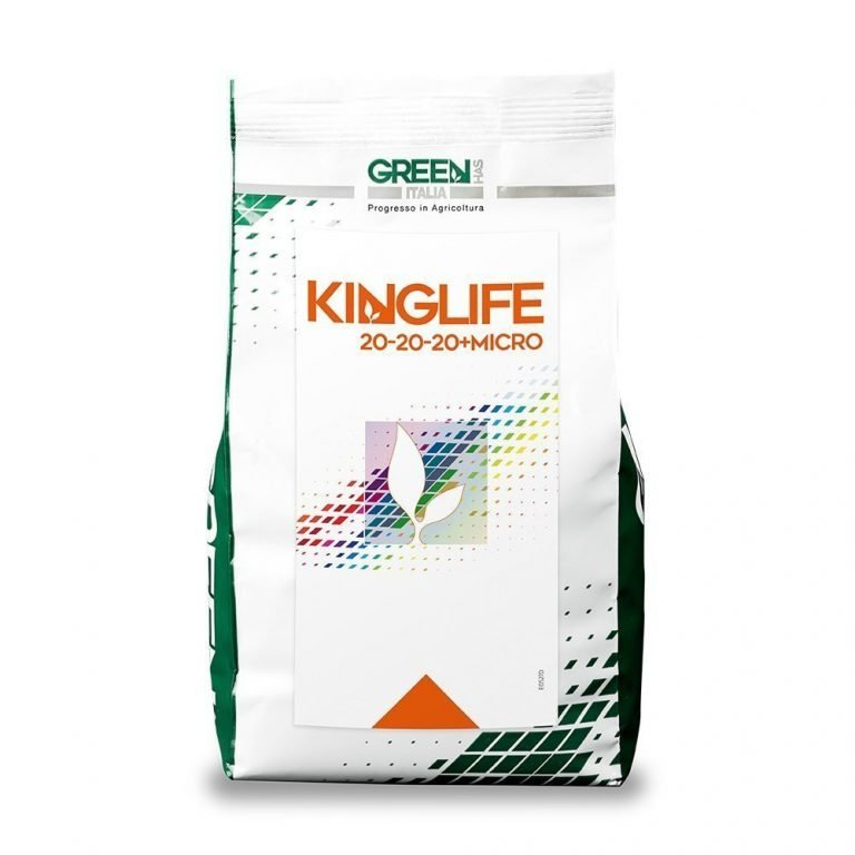 Linea KINGLIFE