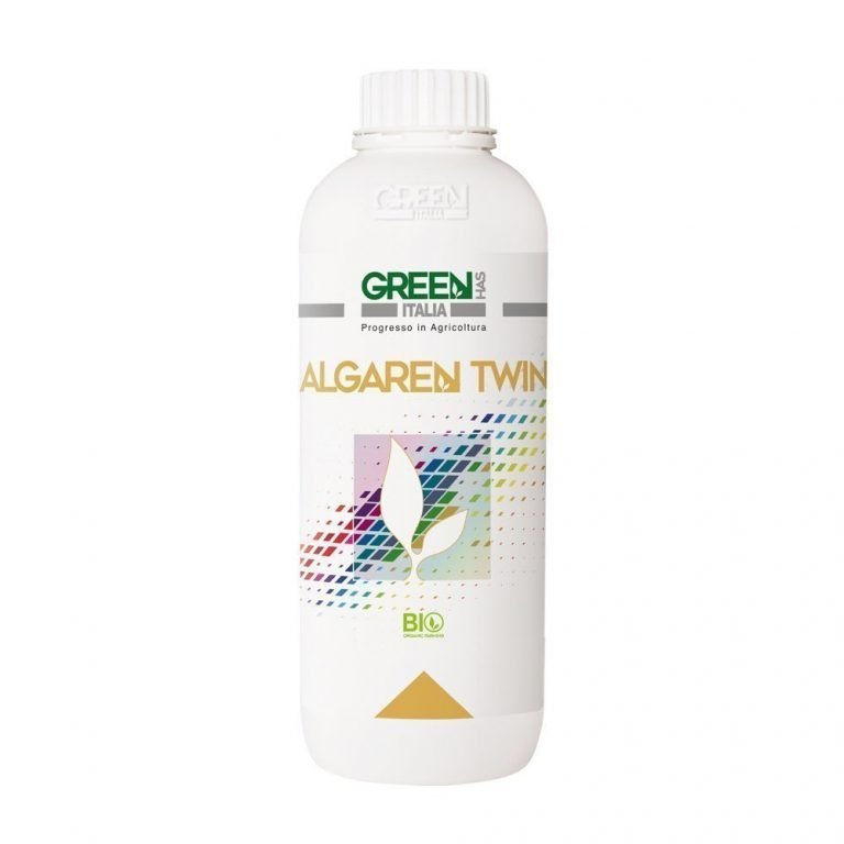 Algaren Twin is the most effective solution to increase the production of your organic wheat