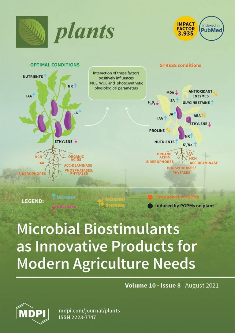 Microbial biostimulants as response to modern agriculture needs